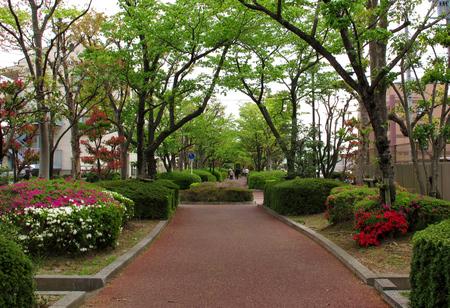 □四季の道.jpg