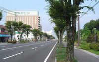 ◎中央道路.jpg
