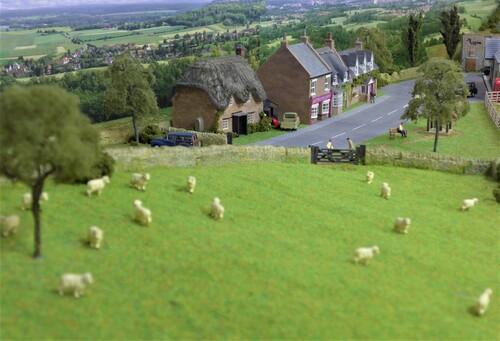 ◎羊の丘とコッツウォルズの町.jpg