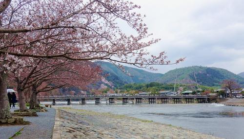 〇嵐山渡月橋_2.jpg