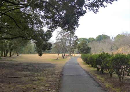 〇散歩道3.JPG