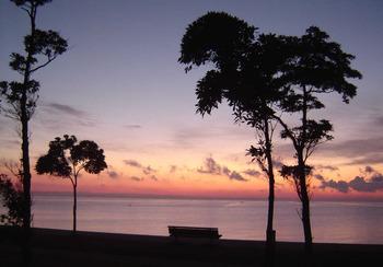 夜明け前千代崎海岸_3.jpg