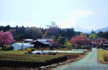 富士SW近辺農家_2.jpg
