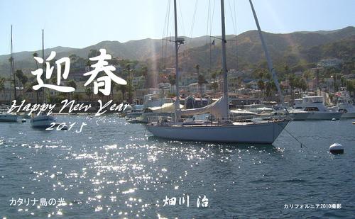 2015賀状カタリナ島.jpg